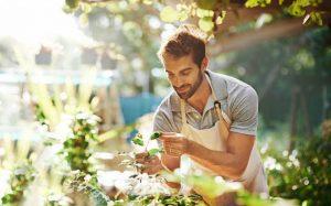 5 Lebensmittel für gesunde Prostata