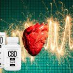 cbdus + plus kapseln, Herz, Bluthochdruck