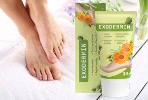 Exodermin Bewertung – Bewältigen Sie Füße und Nagelpilze mit einer Teebaum- und Sheabutterformel im Jahr 2021!